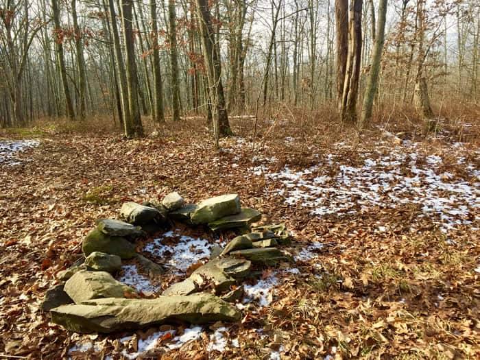 Bluestone -Browns Hill Preserve
