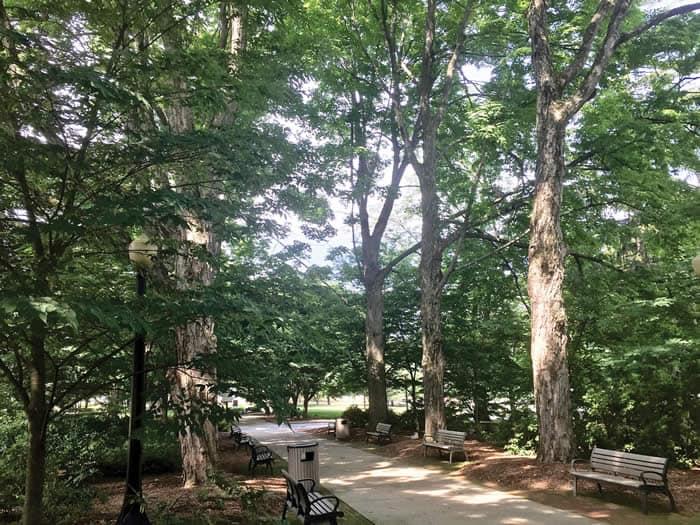 East Stroudsburg University's Arboretum