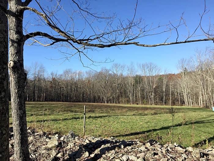 Timber Hill Farm